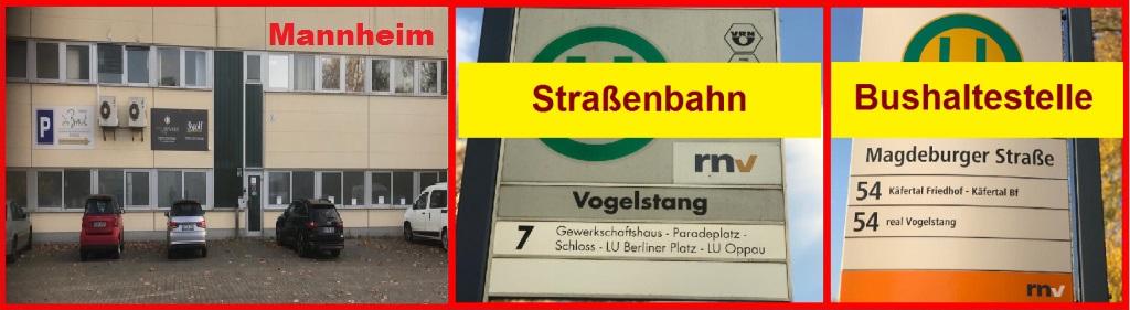 Staplerschein Mannheim